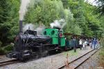 úzkorozchodná železnice Mladějov